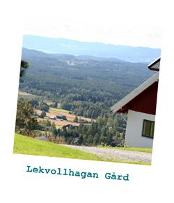lekvollhagan_hvit